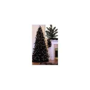 12 Pre Lit Slim Black Ashley Spruce Artificial Christmas Tree   Clear