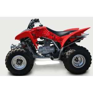 Honda TRX250EX Passion ATV Graphic Kit (Red) (2006 2008