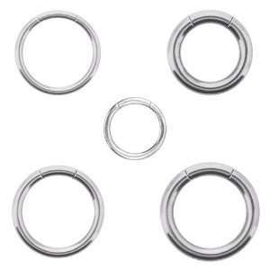 316L Surgical Steel Segment Ring   18G   5/16 Diameter   Sold as a